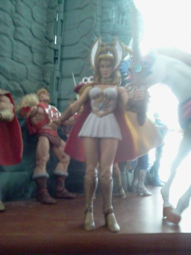 1060 Sexy masters of the universe classics